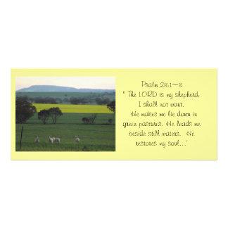 聖書の棚カード3 ラックカード
