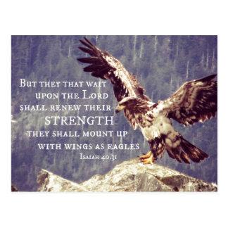 聖書の詩: 強さ、イーグルスとして翼を更新して下さい ポストカード