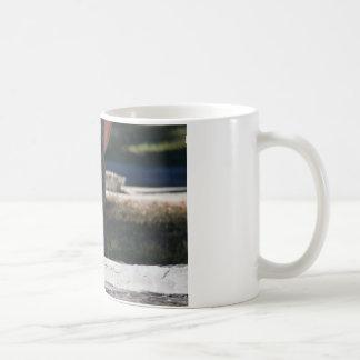 肉屋の鳥田園クイーンズランドオーストラリア コーヒーマグカップ