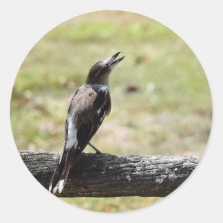 肉屋の鳥田園クイーンズランドオーストラリア ラウンドシール