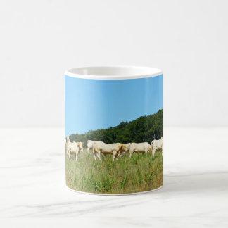肉牛の群れ コーヒーマグカップ