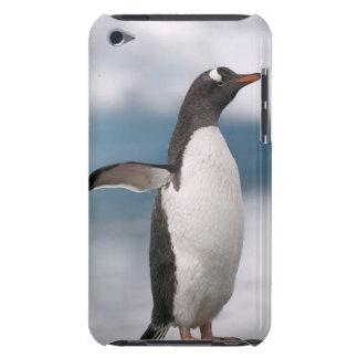 背景幕が付いている岩が多い海岸線のGentooのペンギン Case-Mate iPod Touch ケース