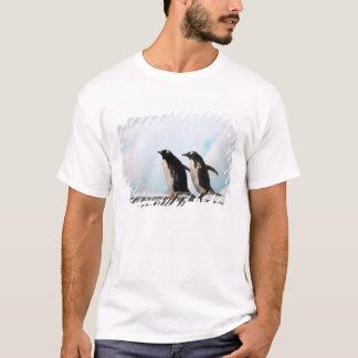背景幕2が付いている岩が多い海岸線のGentooのペンギン Tシャツ