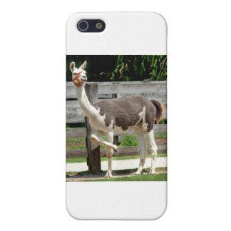 脚を組んでラマのiPhoneの場合 iPhone 5 カバー