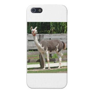脚を組んでラマのiPhoneの場合 iPhone 5 Cover