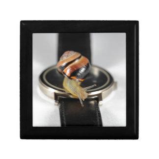 腕時計のかたつむり ギフトボックス