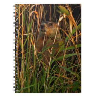 腕時計のノートのGroundhog ノートブック