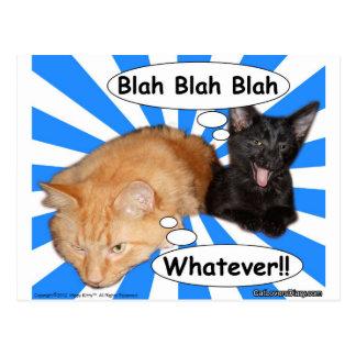 腰回りが大きな子猫何とかかんとかものは何でも!! ポストカード