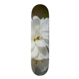 膚触りがよいマグノリア スケートボード