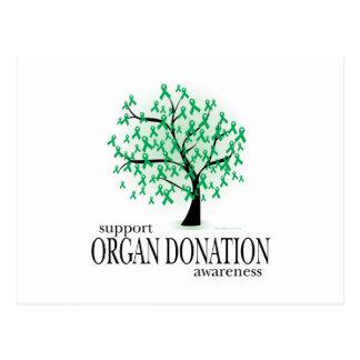 臓器提供の木 ポストカード