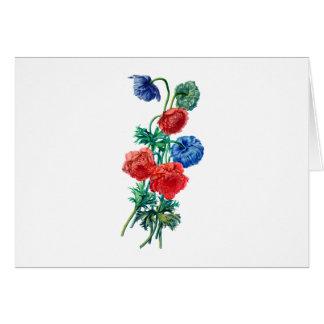 自然から描かれるケシのアネモネ カード