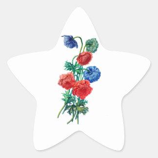 自然から描かれるケシのアネモネ 星シール