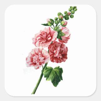自然から描かれるピンクのHollyhock スクエアシール