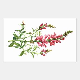 自然から描かれるピンクのSnapdragon 長方形シール
