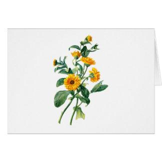 自然から描かれる明るいマリーゴールド カード