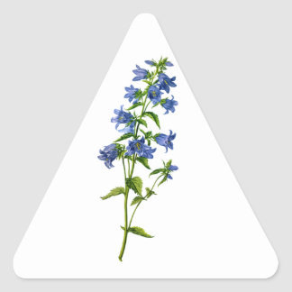 自然から描かれる青いイラクサLeavedホタルブクロ 三角形シール