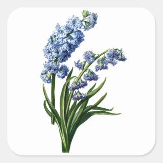 自然から描かれる青いHyacinth スクエアシール