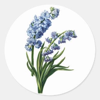 自然から描かれる青いHyacinth ラウンドシール