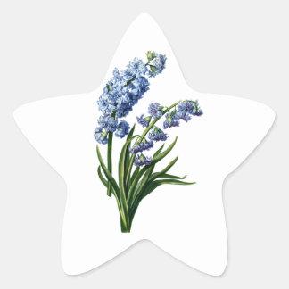 自然から描かれる青いHyacinth 星シール