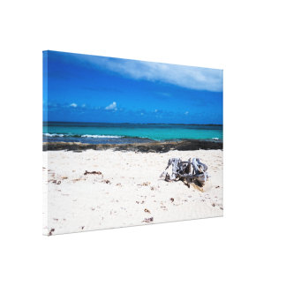 自然でエキゾチックなBeach&Ocean キャンバスプリント