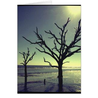 自然なビーチNotecard カード