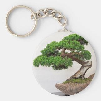 自然な盆栽の木 キーホルダー