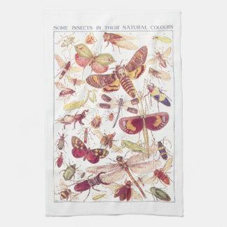 自然な色のある昆虫 キッチンタオル