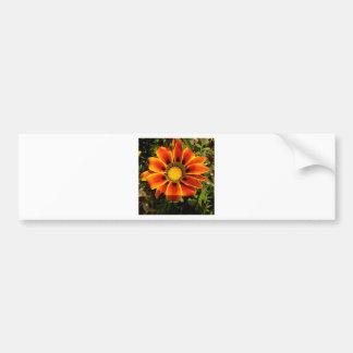 自然な驚異の敏感な花 バンパーステッカー