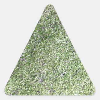 自然に成長する柔らかい緑のコケの草 三角形シール