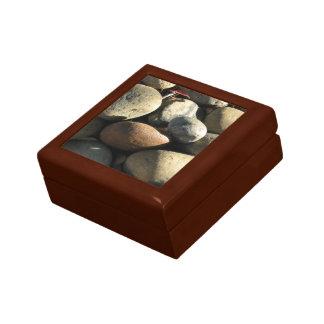 自然にSurfaces_Rocks&Shadeのクールな集り ギフトボックス