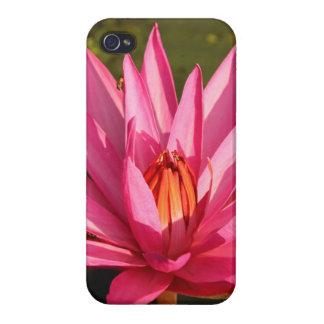 自然のはすの花 iPhone 4/4S COVER