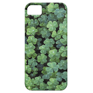自然のアイルランドの葉のクローバー iPhone SE/5/5s ケース