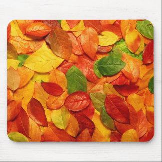 自然のカラフルの葉 マウスパッド