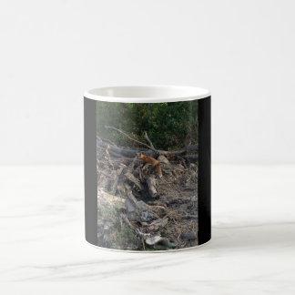 自然のコーヒー・マグのアカギツネ コーヒーマグカップ