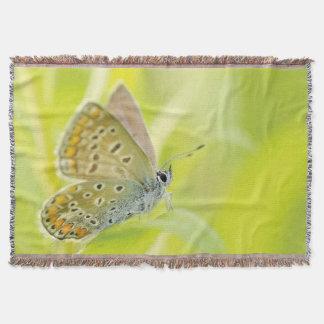 自然のプリントのブランケットの素晴らしい蝶 スローブランケット