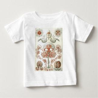 自然のヴィンテージエルンスト・ヘッケルAnthomedusaeの芸術 ベビーTシャツ