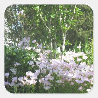 自然の写真によってはニュージャージーアメリカNVN665のおもしろいが開花します スクエアシール