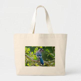 自然の写真撮影の内気なアオカケスの服装のギフト ラージトートバッグ