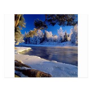自然の川の氷の流れ ポストカード