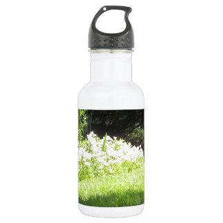 自然の庭のニュージャージーアメリカNVN669のおもしろい ウォーターボトル