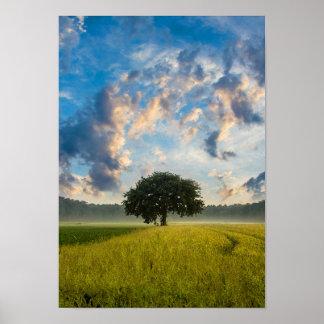 自然の木の芝生の野生の青空の夏 ポスター