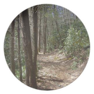 自然の歩行 プレート