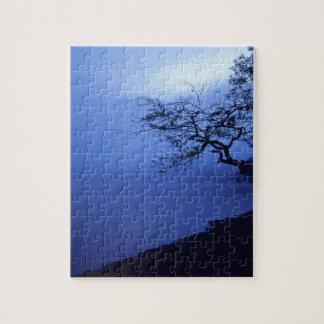 自然の湖畔の濃紺の霧 ジグソーパズル