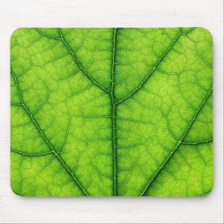 自然の緑の木の葉の質 マウスパッド