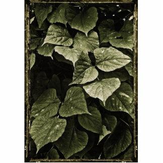 自然の葉の構成 写真彫刻(台付き)