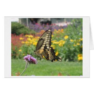 自然の郵便料金の蝶 グリーティングカード