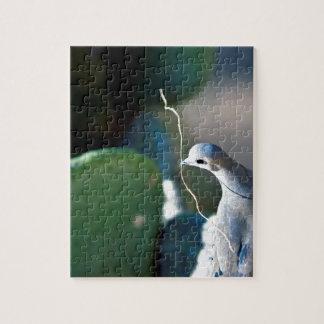 自然の鳩の写真のパズル パズル