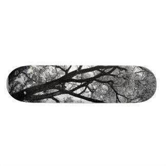 自然の…スケートボードの肢 18.1CM オールドスクールスケートボードデッキ