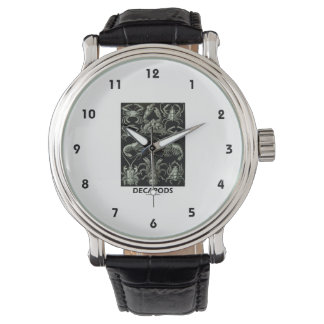自然のDecapodsエルネストHaeckel Artforms 腕時計
