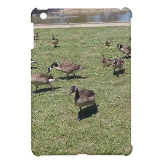 自然のiPad Miniケースのアヒル iPad Miniケース